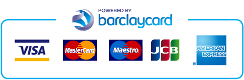 Payment-icons-Large_8